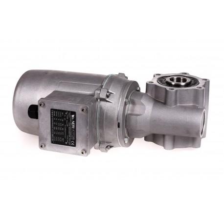 Motoreductor compacto 230/400V 50 HZ R11/107